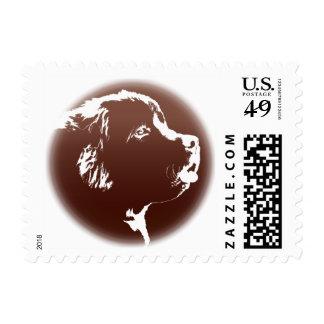 Terranova sella sellos del perro de la montaña