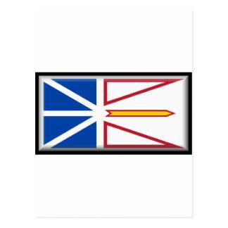 Terranova y Labrador Postales