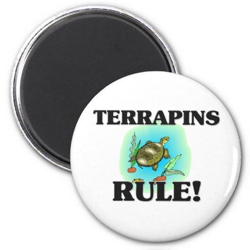 TERRAPINS Rule! Magnet