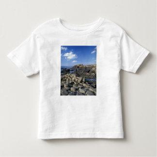 Terraplén de Giants, condado Antrim, septentrional Camisas