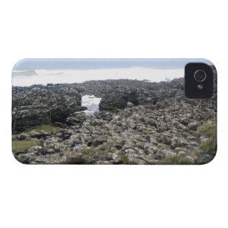 Terraplén Irlanda del Norte de Giants iPhone 4 Fundas