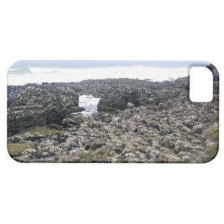 Terraplén Irlanda del Norte de Giants iPhone 5 Funda