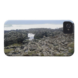 Terraplén Irlanda del Norte de Giants iPhone 4 Case-Mate Cobertura