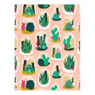 Terrarium Succulent Plant Cactus / Andrea Lauren Postcard