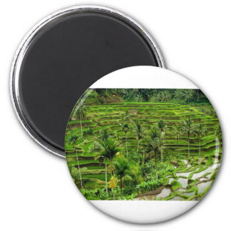 Terraza del arroz en Bali Imán Redondo 5 Cm