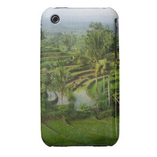 Terraza Ricefield en Bali Case-Mate iPhone 3 Funda