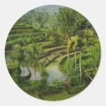 Terraza Ricefield en Bali Pegatina Redonda