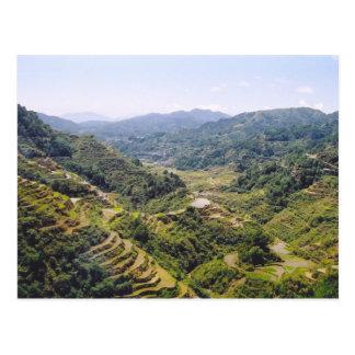 Terrazas del arroz de Banaue Postal