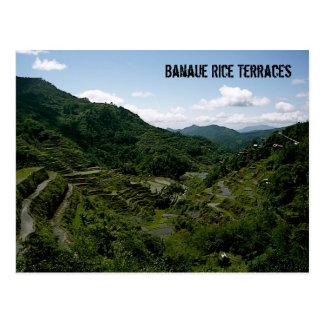 Terrazas del arroz de Banaue Tarjetas Postales