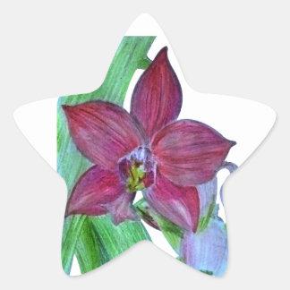 Terrestrial Orchid Star Sticker