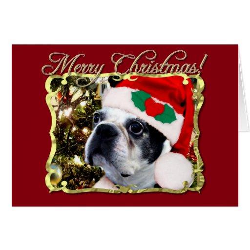 Terrier de Boston de las Felices Navidad Tarjeta De Felicitación