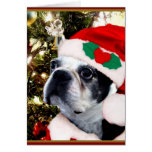Terrier de Boston del navidad Tarjeta De Felicitación