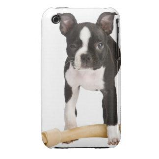 Terrier de Boston que guarda el hueso twisty Carcasa Para iPhone 3