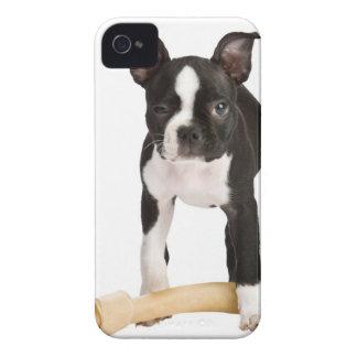 Terrier de Boston que guarda el hueso twisty Carcasa Para iPhone 4 De Case-Mate