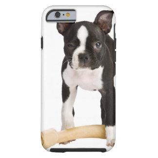 Terrier de Boston que guarda el hueso twisty Funda De iPhone 6 Tough