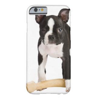 Terrier de Boston que guarda el hueso twisty Funda De iPhone 6 Barely There