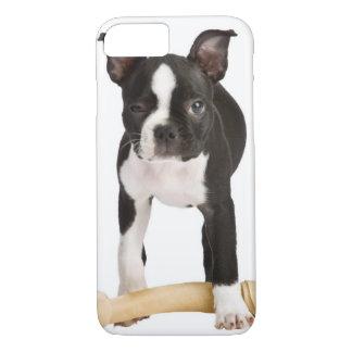 Terrier de Boston que guarda el hueso twisty Funda iPhone 7