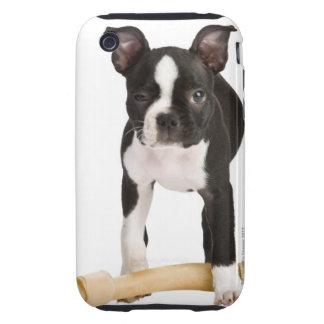 Terrier de Boston que guarda el hueso twisty Funda Resistente Para iPhone 3