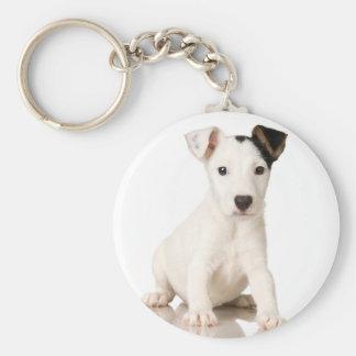 Terrier de Jack Russel Llaveros Personalizados