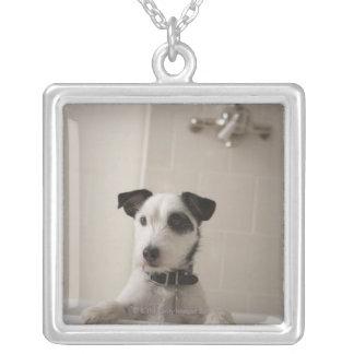 Terrier de Jack Russell Colgantes