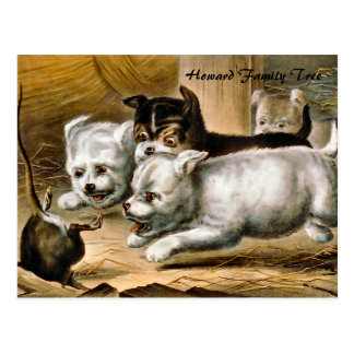 Terrier Dogs Chasing a Rat Postcard