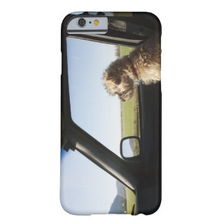 Terrier femenino X que se sienta si asiento Funda Barely There iPhone 6