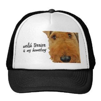"""""""Terrier galés es mi Homeboy """" Gorros"""