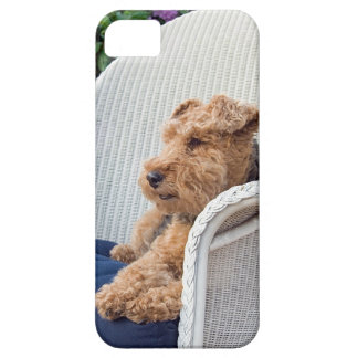Terrier galés funda para iPhone 5 barely there