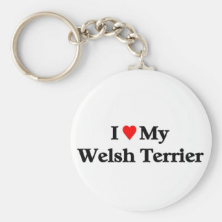 Terrier galés llavero