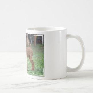 Terrier irlandés dulce taza básica blanca