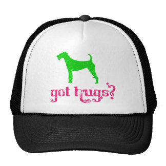 Terrier irlandés gorra