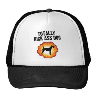 Terrier irlandés gorro