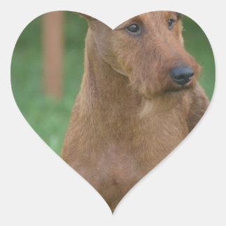Terrier irlandés lindo calcomanías corazones personalizadas
