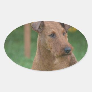 Terrier irlandés lindo pegatinas oval personalizadas