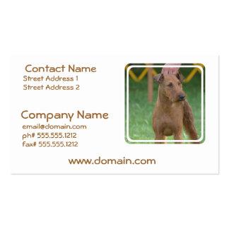 Terrier irlandés lindo tarjetas de visita