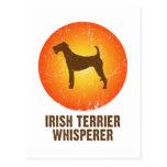 Terrier irlandés postal