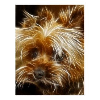 Terrier lindo postales