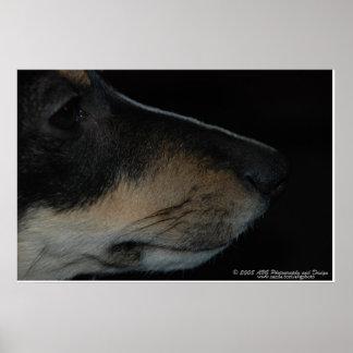Terrier Profile Dog Portrait Photo Print