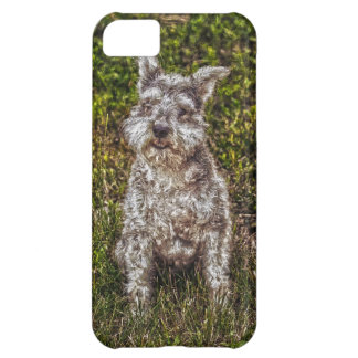 Terrier Schnauzer Pet Dog-lover's Dog Breed iPhone 5C Cases