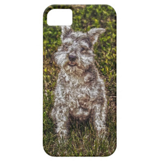 Terrier Schnauzer Pet Dog-lover's Dog Breed iPhone SE/5/5s Case