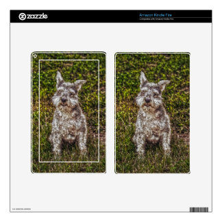 Terrier Schnauzer Pet Dog-lover's Dog Breed Skins For Kindle Fire