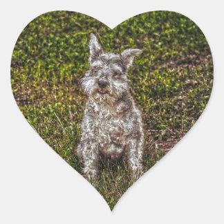 Terrier Schnauzer Pet Dog-lover's Dog Breed Heart Stickers