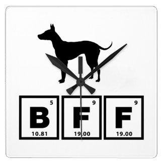 Terrier sin pelo americano reloj de pared