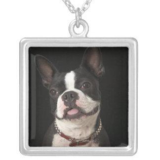 Terrier sonriente de Boston con el cuello Colgante Cuadrado