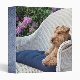 Terrier Time Out Binder