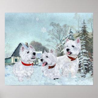 Terrieres blancos de montaña del oeste en la nieve póster