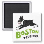Terrieres de Boston Imanes De Nevera