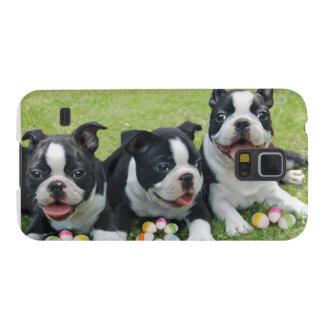 Terrieres de Pascua Boston Carcasa Galaxy S5
