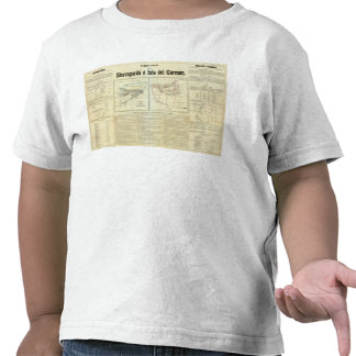 Territorios de Sierragorda e Isla del Carmen Camisetas