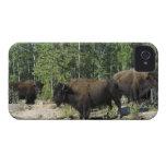 Territorios del noroeste. Nacional de madera del iPhone 4 Case-Mate Cárcasa
